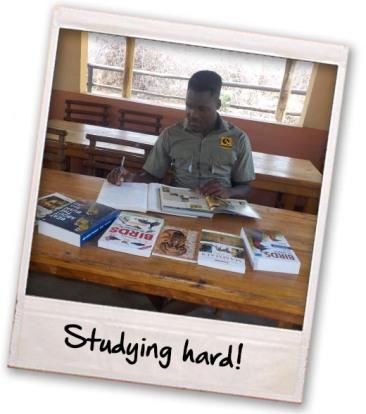 studing-hard