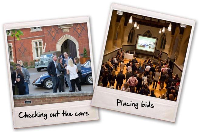 Cars & bids
