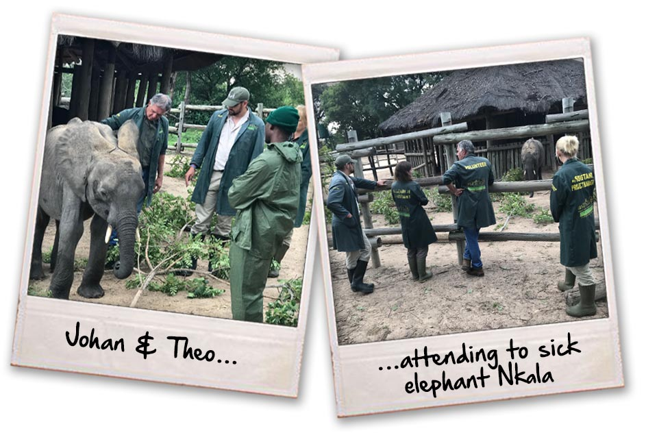assisting Nkala